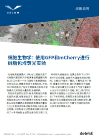 Cellular biology: In-resin flouorescence using GFP and mCherry