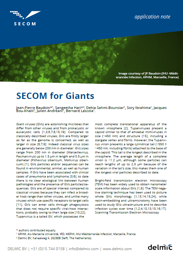 Thumbnail of application note on SECOM for giant viruses