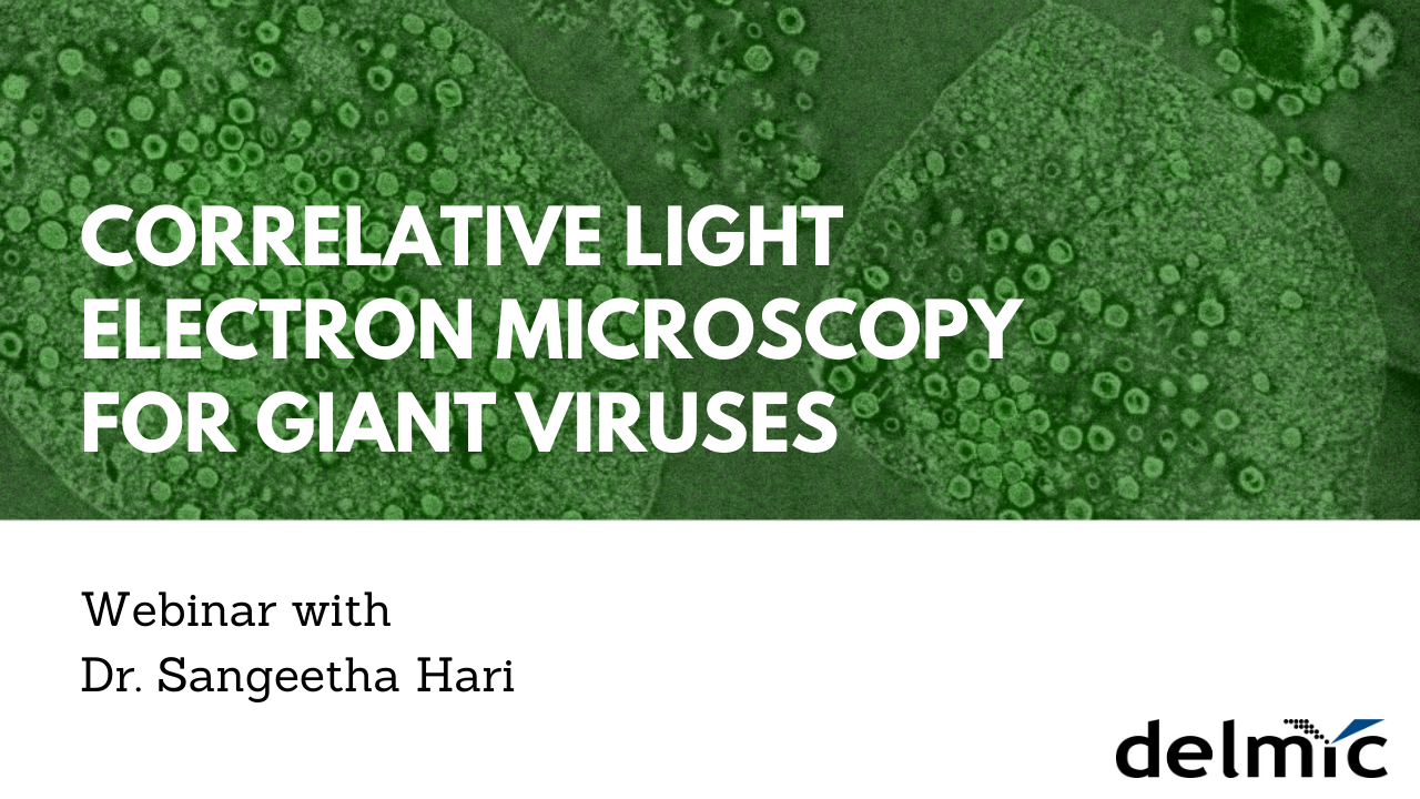 Cover image of webinar CLEM for giant viruses