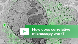 How Does Correlative Microscopy Work?