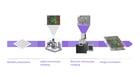 FAST-EM_Light & Electron Microscopy Correlation_Website