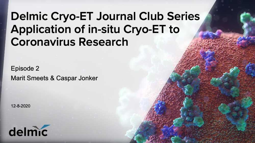 Delmic cryo-ET journal club: cryo-ET used for coronavirus research