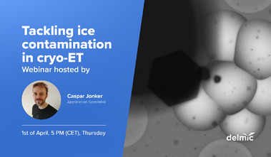 Tackling ice contamination in cryo-ET