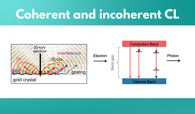 Coherent and incoherent CL
