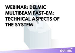 Delmic multibeam FAST-EM: technical aspects of the system
