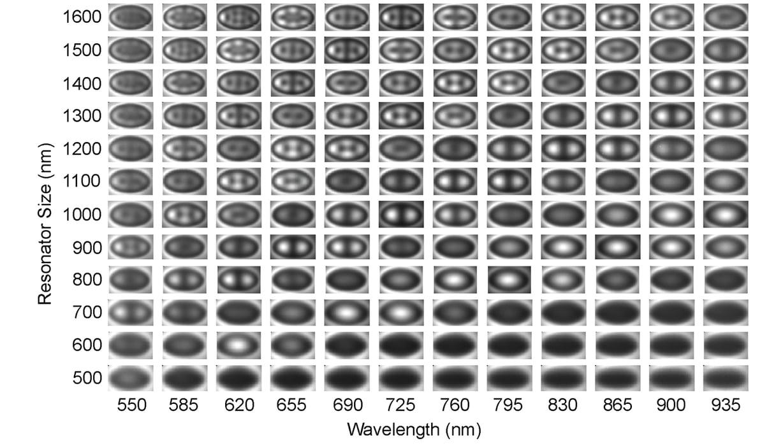 椭圆金腔中不同腔直径的等离子模式