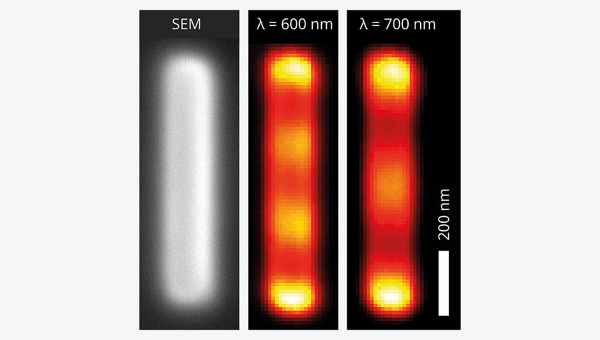 Plasmonic standing waves on a ridge antenna
