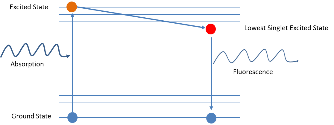 Example of a Jablonski diagram of a fluorophore