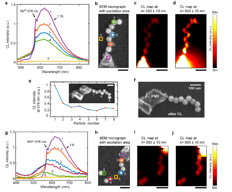 dna plasmonic waveguides cathodoluminescence imaging
